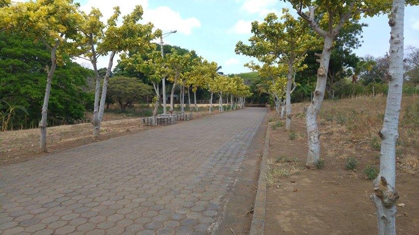 carretera-vieja-a-leon-kmc-bienes-raices-6412795 (3)