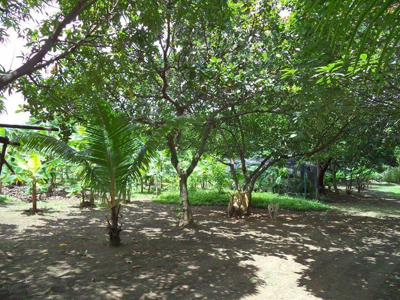 ticuantepe-la-concha-kmc-bienes-raices-6372963-1