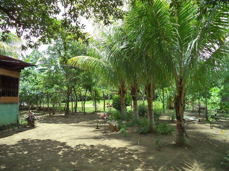 ticuantepe-la-concha-kmc-bienes-raices-6372963-3