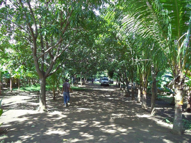 ticuantepe-la-concha-kmc-bienes-raices-6372963-4