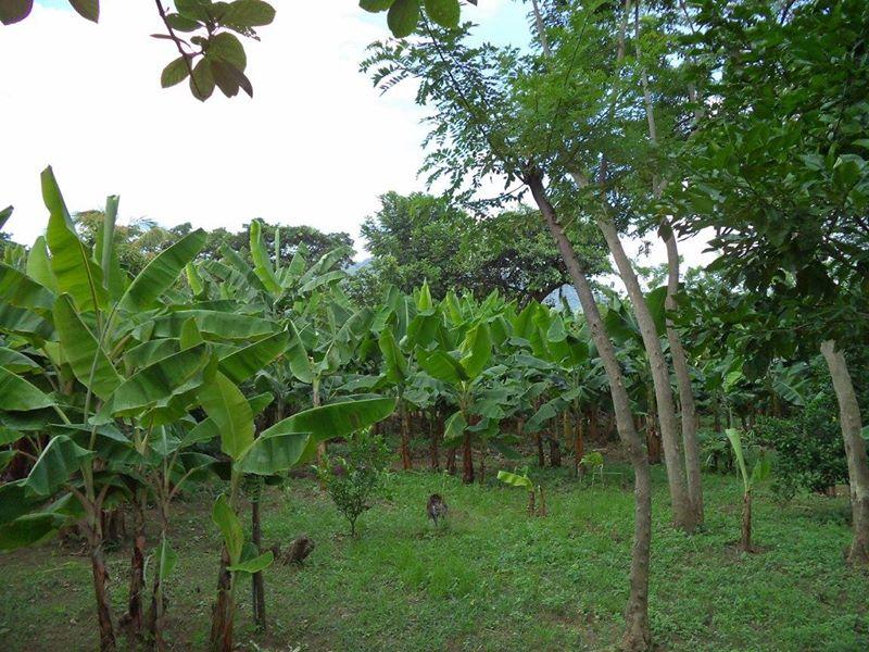 ticuantepe-la-concha-kmc-bienes-raices-6372963-5